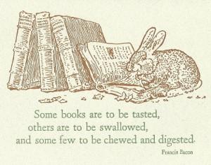 Minnet av Kanin i mina böcker