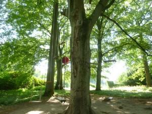 Gungor och bollar i parken på Wanås