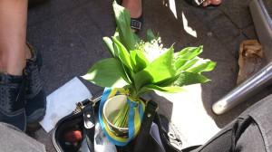 Min fina liljekonvaljbukett